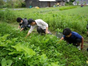 農業体験 4月3日_02