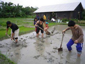 農業体験 4月3日_06