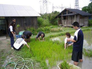 農業体験 4月17日、24日_06