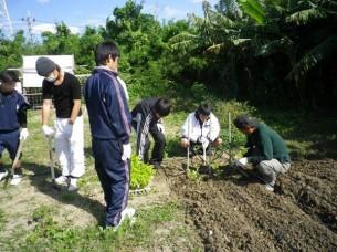 ゆめさき農園 農場風景【11月】_04
