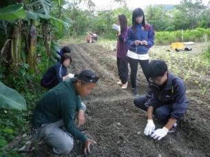 ゆめさき農園 農場風景【11月】_09