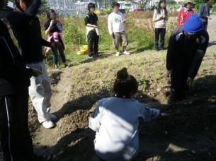 ゆめさき農園 農場風景【12月】_07
