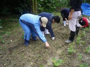 ゆめさき農園 農場風景【12月】_11