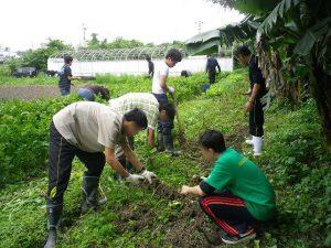 ゆめさき農園 農場風景【3月】_02