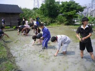 ゆめさき農園 農場風景【4月】_06