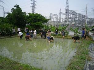 ゆめさき農園 農場風景【4月】_08